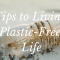 8 Simple Steps Towards Living a Plastic-Free Life